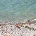 Пляж на Высоком берегу 12.09.2010